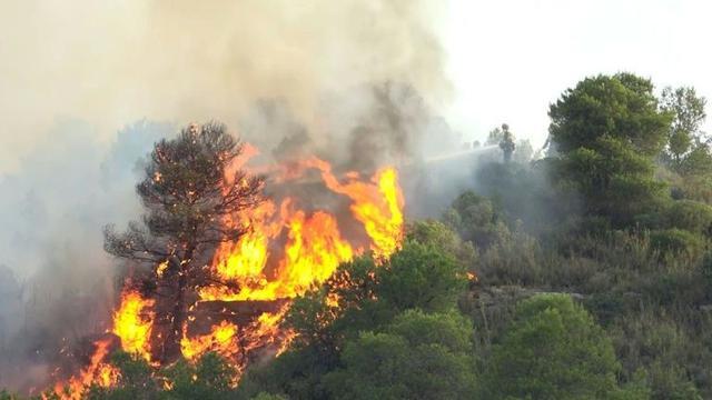 Polres Kaur Selidiki Penyebab Kebakaran lahan