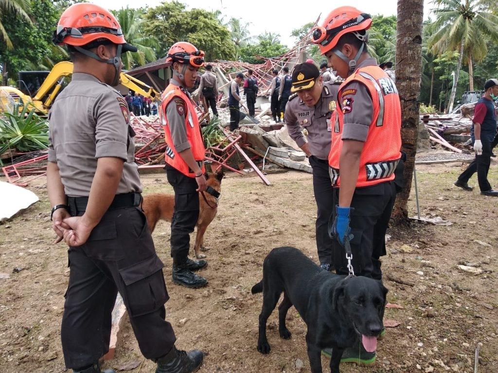 Unit K9 Ditpolsatwa Polri Bantu Evakuasi Korban Tsunami di Banten