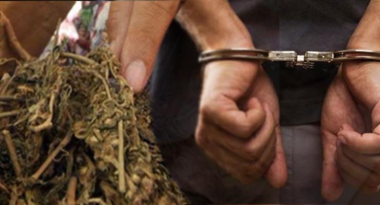 Simpan 10 Paket Ganja, Warga Curup Ditangkap Polisi