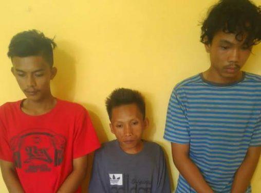Hendak Pesta Ganja, 3 Pemuda Ditangkap Polisi