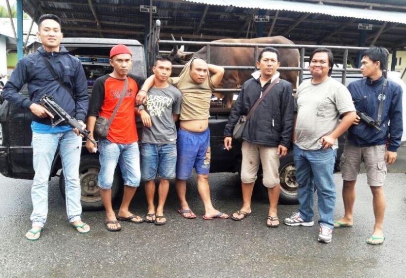 Curi Sapi, 2 Pria Ditangkap Polisi