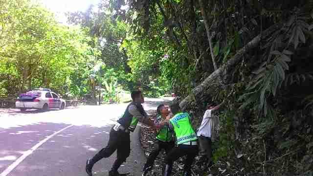 Polantas Polres Kepahiang Evakuasi Pohon Tumbang di Gunung