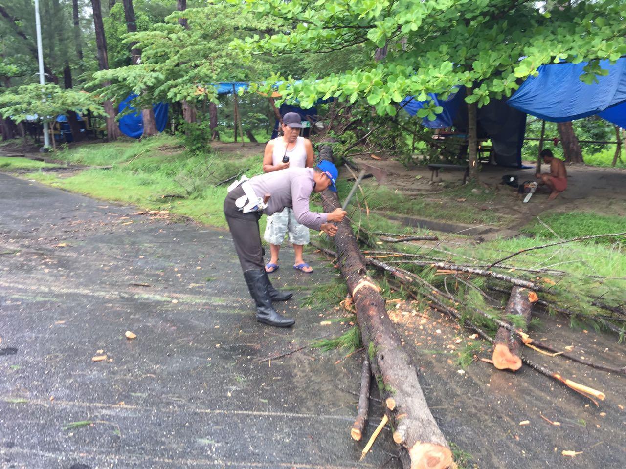 Singkirkan Pohon Tumbang, Polisi Mandi Hujan Bantu Warga