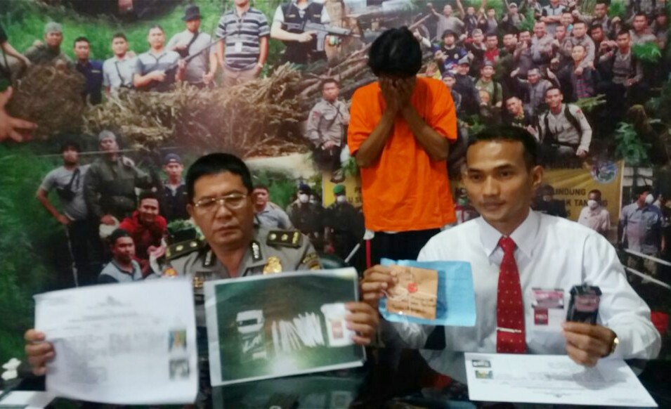 Edarkan Tembakau Gorilla, Pemuda Dusun Besar Ditangkap Polisi