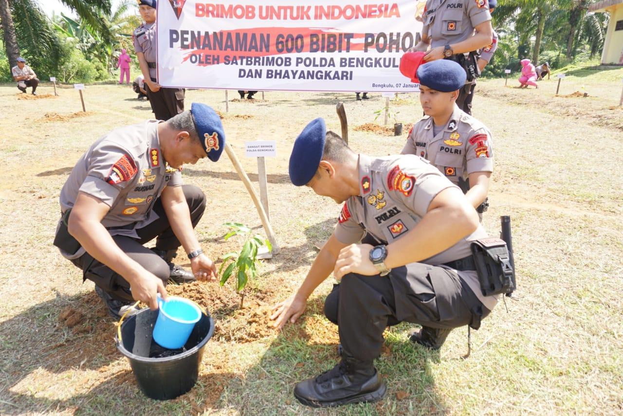 Satbrimobda Polda Bengkulu Beserta Bhayangkari Tanam 600 Bibit Pohon