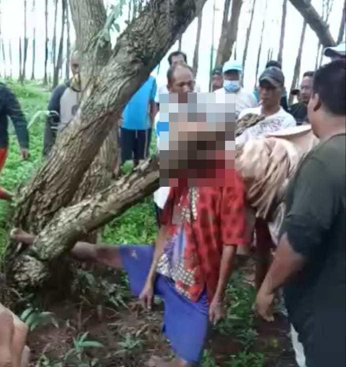 Polsek Sukaraja Selidiki Penyebab Kakek Tewas Tergantung di Pohon