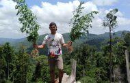 Temukan Ladang Ganja, Polres Seluma Amankan 12 Batang Ganja