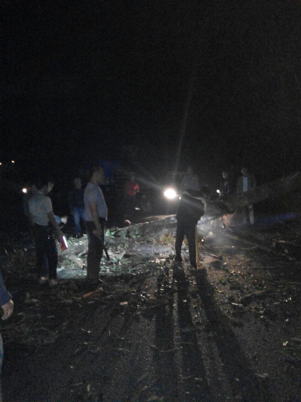 Sempat Lumpuh Dihadang Pohon Tumbang, Jalan Lintas Provinsi Kembali Lancar