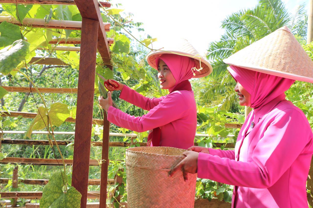 Kunker ke Kaur, Ibu Ketua Bhayangkari Daerah Bengkulu Jadi Petani dan Ibu Asuh