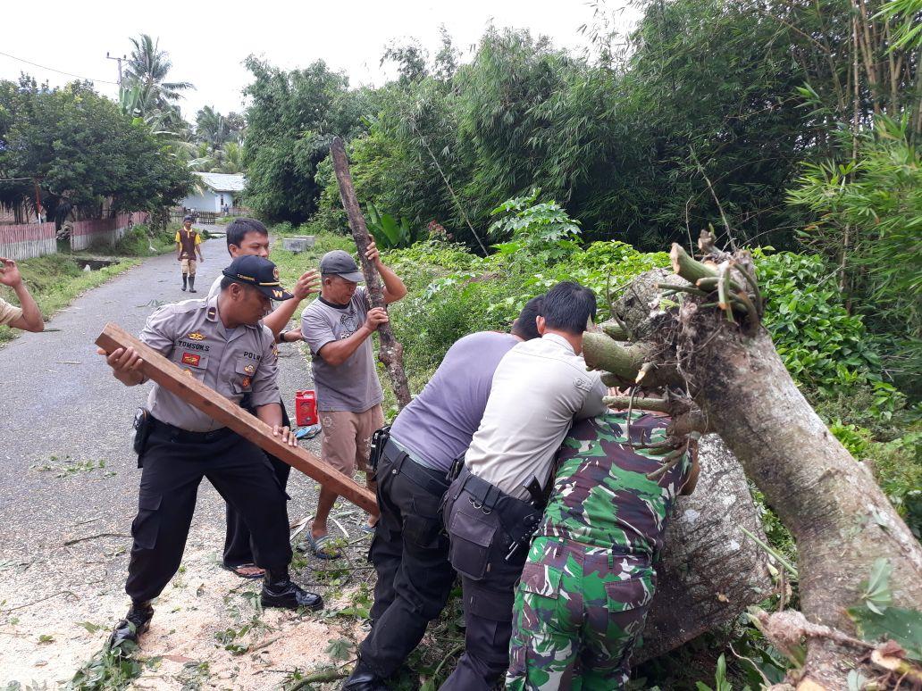 Polsek Kaur Utara Bersama Koramil dan Masyarakat Gotong Royong Membersihkan Pohon Tumbang
