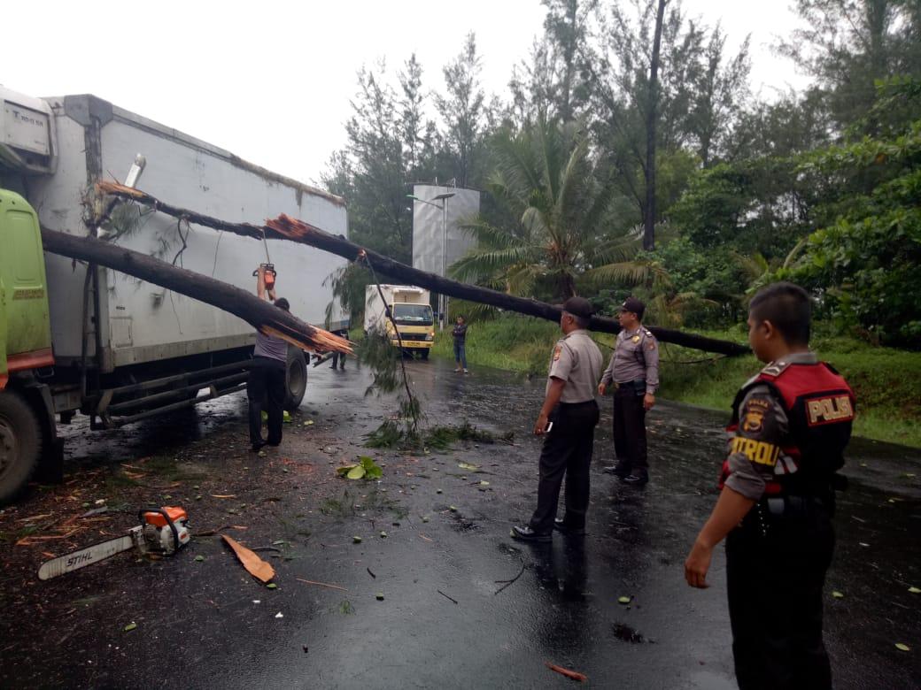 Sabhara Polda Bengkulu Evakuasi Pohon Tumbang di Jalan Pariwisata