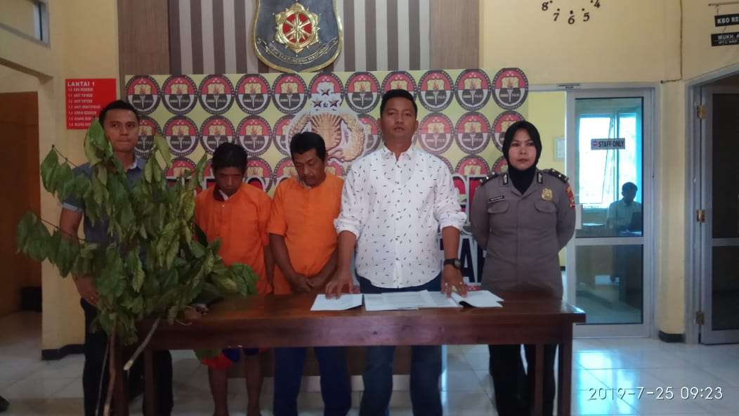 2 Perambah Hutan Ditangkap Polisi