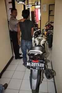 Musang Ranmor Di bekuk Polisi